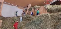 Bauernhof2b